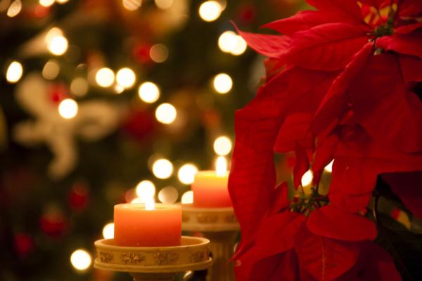 La Navidad y su vitalidad sanadora