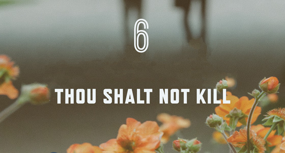 6th Commandment Poster